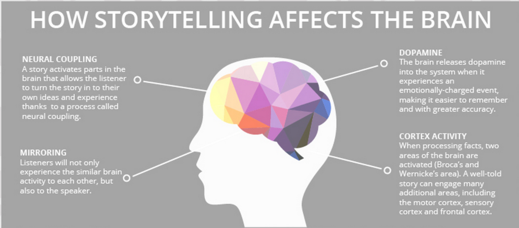 Graphic with gray background and illustrated image of the brain depicting how storytelling affects it